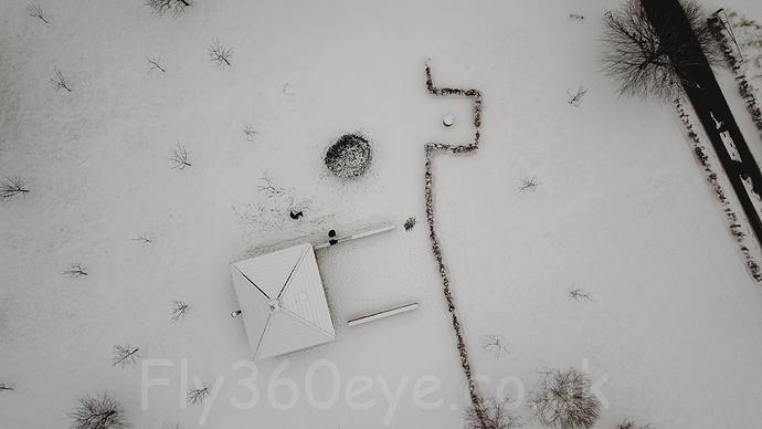 Snow%20(7%20of%2012)