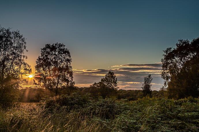 IMG_3065 Cann_Chase_Sunset