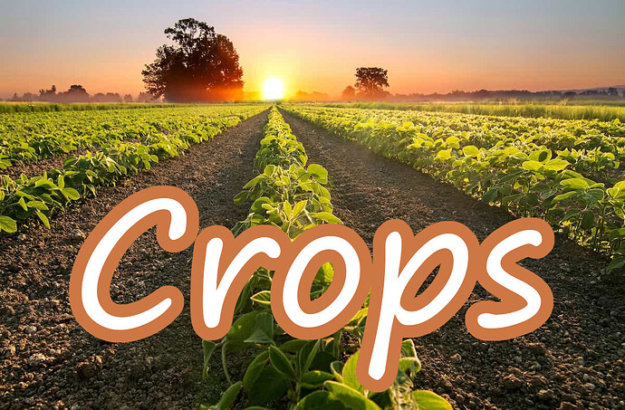 Crop-Yield-Forecasting-Teaser