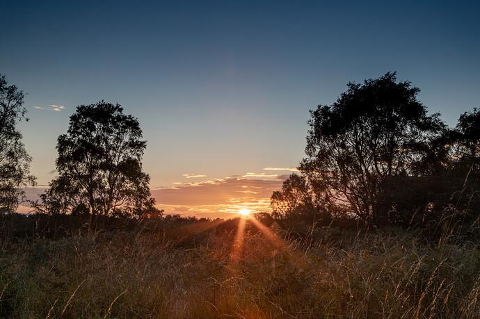 IMG_3133 Cann_Chase_Sunset